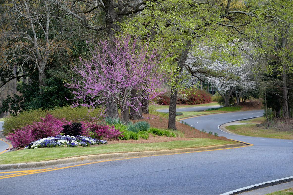 home-slider-street